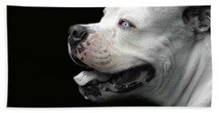 Bulldog Sando  Portrait  Beach Sheet