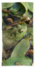 Bullfrog Beach Towel