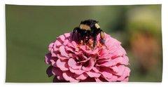 Bumble Bee On Zinnia 2649 Beach Sheet