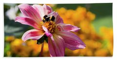 Bumblebee On Orange Beach Towel