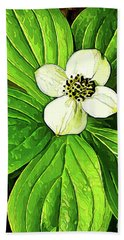 Bunchberry Blossom Beach Towel