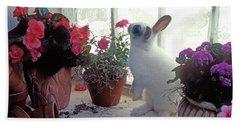 Bunny In Window Beach Towel