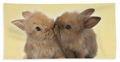Bunny Kisses Beach Sheet