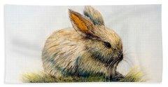 Bunny Beach Sheet