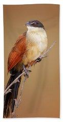 Burchell's Coucal - Rainbird Beach Towel
