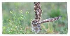 Burrowing Owl Spies Grasshopper Beach Towel