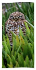 Burrowing Owl Beach Towel