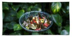 Butterflies Feeding Beach Sheet
