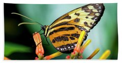 Butterfly #1957 Beach Towel by Chuck Flewelling