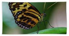 Butterfly #1963 Beach Sheet by Chuck Flewelling
