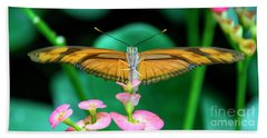 Butterfly #1983 Beach Sheet by Chuck Flewelling