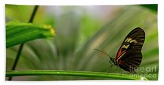 Butterfly #1992 Beach Towel by Chuck Flewelling