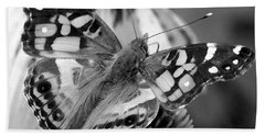 Butterfly American Lady Beach Sheet by James C Thomas