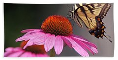 Butterfly And Coneflower Beach Towel