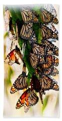 Butterfly Butterfly Beach Sheet