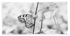 Butterfly Eatting  Beach Sheet