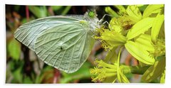 Butterfly Feasting On Yellow Flowers Beach Sheet