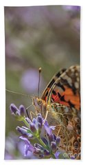 Beach Towel featuring the photograph Butterfly In Close Up by Patricia Hofmeester