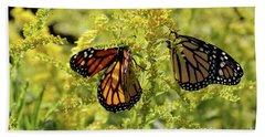 Butterfly In Fall  Beach Sheet