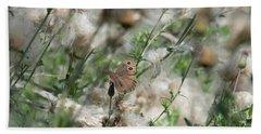 Butterfly In Puffy Seed Heads Beach Sheet