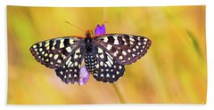 Butterfly On A Lupine Beach Towel