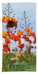 Butterfly On Bird Of Paradise Beach Towel