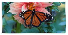 Butterfly On Dahlia Beach Towel