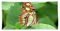 Butterfly On Leaf Beach Towel