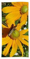 Butterfly On Yellow Flower Beach Towel