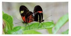 Butterfly Pair Beach Sheet
