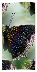 Butterfly Sunbath #2 Beach Towel