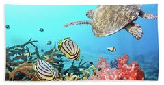 Butterflyfishes And Turtle Beach Towel