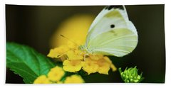 Cabbage White Butterfly Beach Towel by Betty LaRue