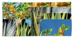 Cactus And Bells Beach Sheet