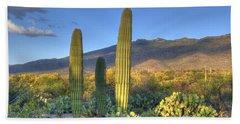 Cactus Desert Landscape Beach Sheet