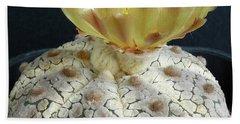 Cactus Flower 1 Beach Sheet