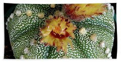 Cactus Flower 10 Beach Towel