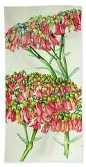 Cactus Flower 3 Beach Towel