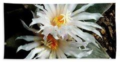 Cactus Flower 7 2 Beach Sheet