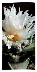 Cactus Flower 8 Beach Sheet