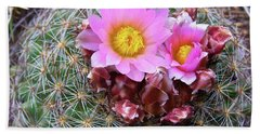 Cactus Flower  Beach Towel by Alan Johnson