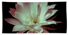 Cactus Flower Beach Sheet