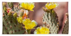 Cactus Flowers Beach Sheet