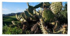 Cactus In The Mountains Beach Towel