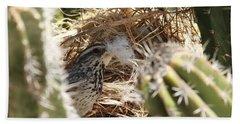 Cactus Wren Feather Beach Sheet