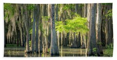 Caddo Swamp 1 Beach Towel