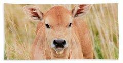 Calf In The High Grass Beach Towel