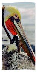 California Brown Pelican Beach Sheet by Michael Cinnamond
