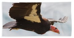 California Condor At Big Sur Beach Towel