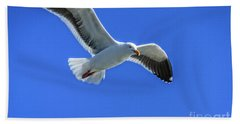 California Gull Beach Towel by Robert Bales